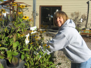 Val working at Prairie Tree